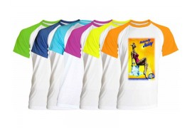Tee-shirt bicolore Fun manches courtes